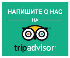 tripadvisor transtempo